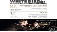 Appuntamenti White Bird
