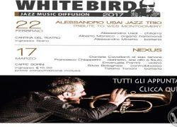 Appuntamenti White Bird